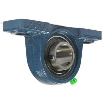 Spare Parts Pillow Blocks Mounted Ball Bearing Units (UCP206-18) Ball Bearing