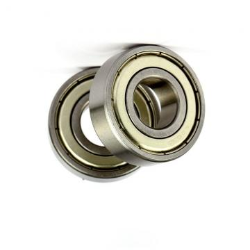 Nks/SKF/Fyh/ Pillow Block Ball Bearing Ucf206, UCP206, Ucfc206, UCT206, UCFL206, UCP206-18, UCP206-19/UCT205-18/for Agriculture Machinery, Mask Machine.