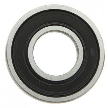 SKF Brand Nj Nu Nup Roller Bearing Cylindrical Roller Bearing