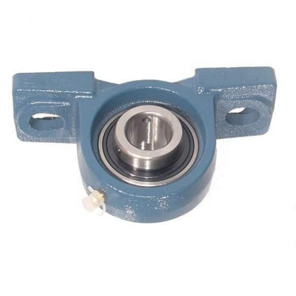High Temperature Resistance Plastic Housing Ss UCP206 #1 image